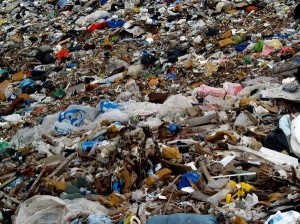 "Imagine the value of garbage collection...it is a virtuous endeavor (""Photo: JohnNyberg, rgbstock.com"")"